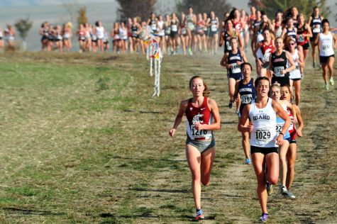 Cross Country succeeds in Lewiston