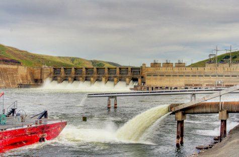 Experts debate dam removal