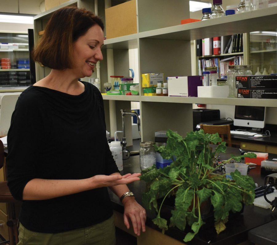 Plant-researchWEB