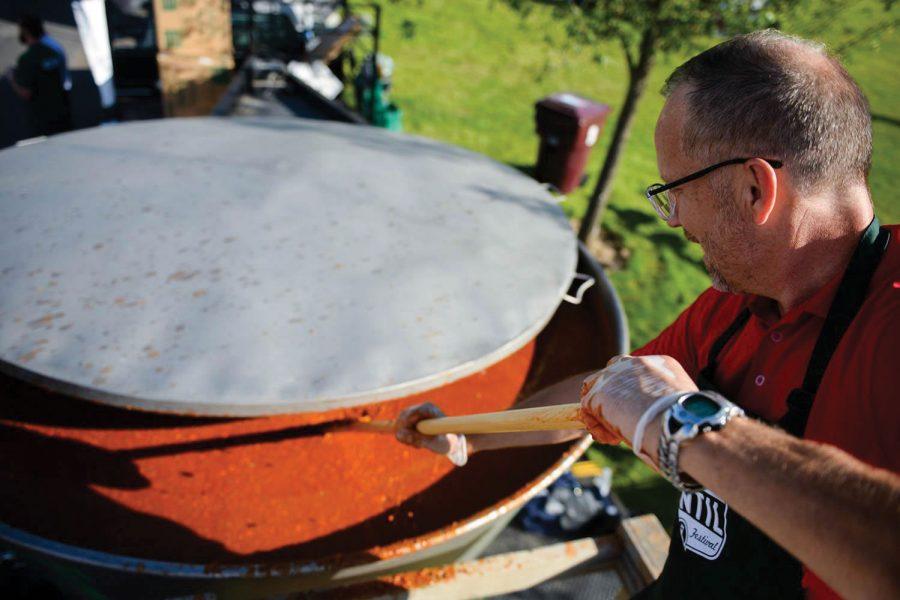 Festival brings community, WSU together