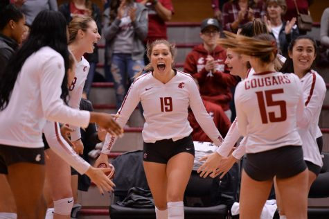 Cougar volleyball faces Arizona for second time this season