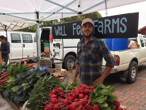 WSU Extension, farmers help feed families