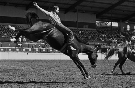 'Photographs from the Gay Rodeo' showing at UI
