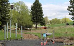 Pullman plans to make some parks more accessible