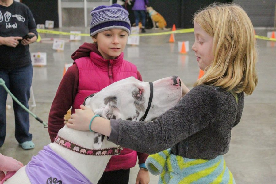 Children+interact+with+shelter+dogs+at+the+Howl-O-Ween+event+Sunday+afternoon+at+the+Latah+County+Fairgrounds+and+Event+Center.