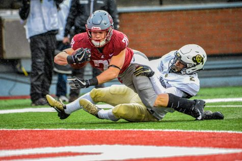 Sophomore running back Max Borghi goes in for the touchdown against Colorado on Saturday at Martin Stadium.