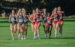 Cross country women, men's teams finish in top 10