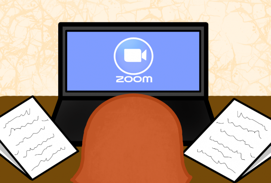 Zoom application offers updates for students, faculty