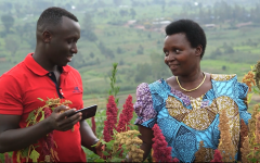 Cedric Habiyaremye, WSU research associate, and his mother in their quinoa research field in Rwanda.