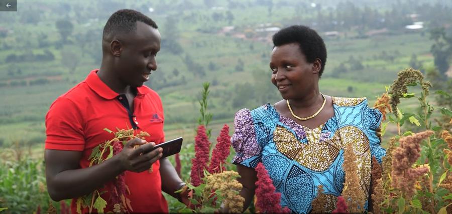 Cedric Habiyaremye, WSU research associate, and his mother in their quinoa research field in Rwanda.