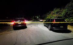 Shots were fired early Saturday morning near the 1200 block of NE Myrtle Street.
