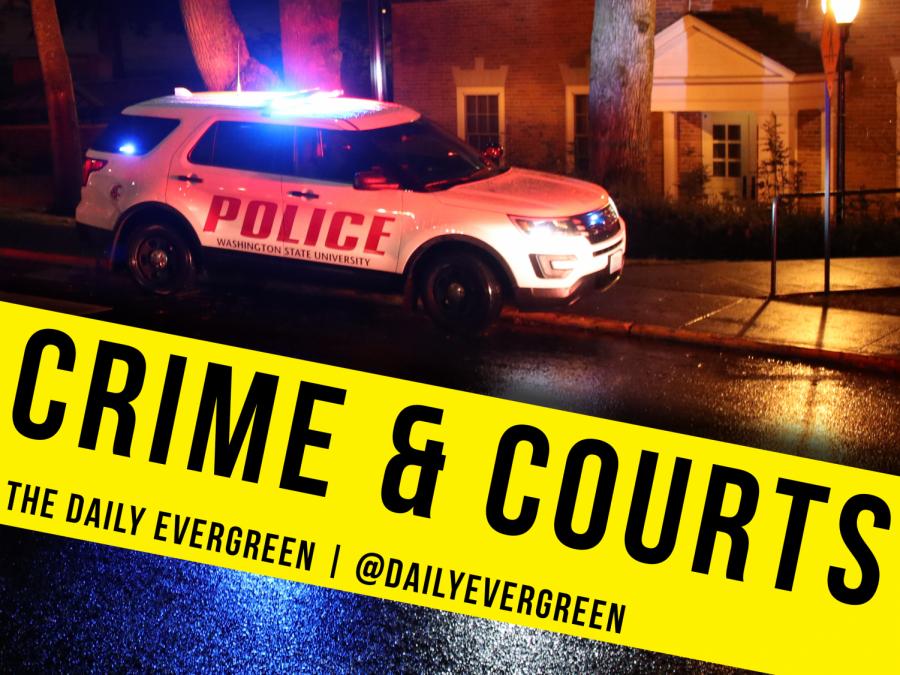 Gun violence in Pullman rises